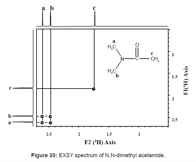 EXSY spectrum of N,N-dimethyl acetamide